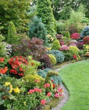 Принципы подбора декоративных растений для садов и парков Москвы